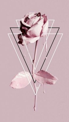 Fondos de iPhone y Android: Paintdripping Rose Wallpaper para iPhone y Andro . - iPhone and Android Wallpapers Tumblr Wallpaper, Robot Wallpaper, Cute Wallpaper Backgrounds, Pretty Wallpapers, Mobile Wallpaper, Laptop Backgrounds, Laptop Wallpaper, Wallpaper Wallpapers, Galaxy Wallpaper