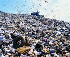 TOUCH this image: LandFill by Chesnut_10
