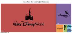 Superficie des parcs Disney - Cocon Dore
