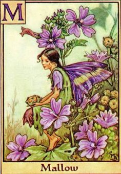 Mallow-Alphabet-Flower-Fairy-Original-Vintage-Print-by-Cicely-Mary-Barker-Letter