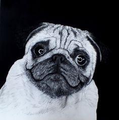 """""""Mops / Pug"""" Pencil, carbon and acryl on canvas 100 x 100 cm Pugs, Pencil, Portrait, Canvas, Tela, Men Portrait, Portrait Illustration, Canvases, Pug"""