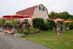 Three Fox Vineyards Delaplane, VA Fauquier County