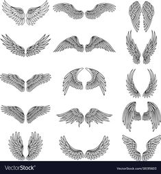 Monochrome illustrations set of different stylized wings for logos or. Wing Tattoo Men, Skull Hand Tattoo, Wing Tattoo Designs, Tattoo Design Drawings, Girl Back Tattoos, Small Back Tattoos, Lower Back Tattoos, Tattoos For Guys, Angel Wings Painting