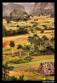 Vinales Valley - Vinales, Pinar del Rio, Cuba http://www.cuba-junky.com/pinar-del-rio/vinales-home.htm