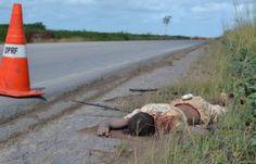 Notícias Potiguar : AL - Corpo crivado de balas é encontrado as margens da BR 101 em Alagoas