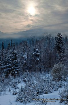 Mt. Canon Sunrise, Franconia, New Hampshire, USA.