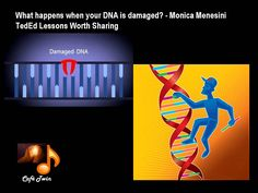 DNA DAMAGE AND REPAIR BY TEDED__Ideas Worth Sharing