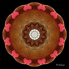 Mandala ''Hahn'' von KreativesbyPetra #kreativesbypetra #Mandala #mandalaart #Natur #nature #fotografie #photography #naturfotografie #naturephotography #makro #macro #makrofotografie #macrophotography #Spiegelung #Spiegelungen #abstrakt #Abstract #Reflexion #adobephotoshop #photoshop #canon #farben #colours #Leinwand #canvas #hahn Mandala Art, Adobe Photoshop, Hahn, Petra, Serving Bowls, Tableware, Mandalas, Macro Photography, Nature Photography