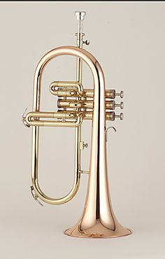 I want to learn to play this. Not because of Andrew Dost or anything. I'm not some crazy obsessive person. He. He. Flugelhorn.