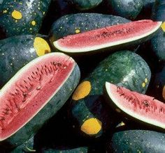 I have one of these almost ready right now.  Organic Moon and Stars Watermelon Seeds by MoonlightMicroFarm