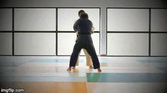 Judo 유도 : Sode-tsurikomi-goshi