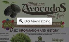 avocado uses health benefits preview How Avocado Can Help with Weight Management