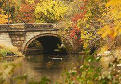 Balcony Bridge in Central Park.