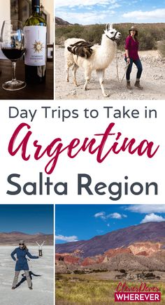 Day Trips From Salta – 3 Tours Around Northern Argentina.
