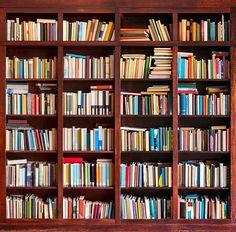 5x7ft Vinyl Bookshelf Study Library Books Photo Studio