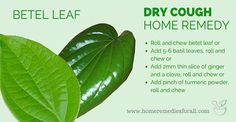 dry-cough-remedy-betel-leaf