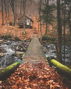 Sharing my obsessive love of rustic cabin life through photos and art I have collected. Please feel free to share - most of the photos. Ideas De Cabina, Beautiful Homes, Beautiful Places, Cabin In The Woods, Cottage In The Woods, Little Cabin, Cabins And Cottages, Log Cabins, Rustic Cabins