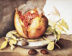 Giovanna Garzoni.  Pomegranate with Chestnuts (+ caracol + saltamontes)