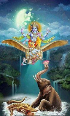 Vishnu on Garuda Vahana Krishna Avatar, Krishna Hindu, Krishna Statue, Hindu Deities, Hanuman, Lord Krishna Images, Radha Krishna Images, Krishna Pictures, Lord Shiva Painting