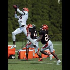 Wide receiver A.J. Green (18) leaps for a catch on day four of training camp at the Cincinnati Bengals training facility in downtown Cincinnati, Monday, Aug. 3, 2015. The Enquirer/Sam Greene