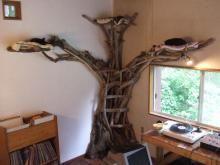 流木のキャットタワー!! 山のおじさんの創作日記