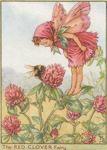 """Het eerste boekje van De Bloemenkinderen, """"De Bloemenkinderen van de ..."""