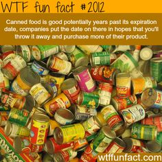Canned food facts - yep! So do the smell test (does it smell off?) the Sound test (did it make freaky air burp noises when you opened it) and the Look test (does the can look damaged or rusted).