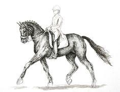 MZ - horse art: Trot I