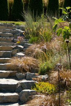 bob hyland stone steps
