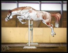 Fuego doing some jumps. Horse Drawings, Animal Drawings, Art Drawings, Star Stable Horses, Arte Equina, Horse Animation, Horse Coat Colors, Native American Horses, Horse Coloring Pages