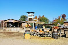 Over 30 minutes away, Beggs Family Farm in Sikeston is a good place to take you family in the fall months. They offer activities such as: wagon rides, farm animal displays, pedal cars and more! The farm also offers a gift shop with all of your fall decorating needs available at your finger tips. For more information visit VisitMO.com