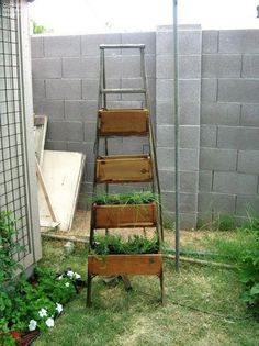 I will do this!! I love ladders!!