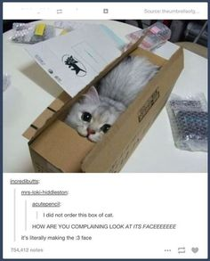 20 Tumblr Posts About Animals