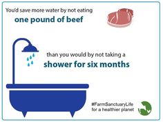 Meat takes a tremendous amount of water to produce. If you want to save the planet's precious drinking water, go vegan! Read more: http://www.thelostlemurian.com/vegan-for-the-planet/