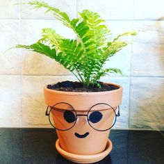 De wijze varen | Woezel en Pip | DIY | Peuterkamer Home Deco, Diy For Kids, Fun Activities, Diy And Crafts, Diys, Flora, Planter Pots, Birthday, School