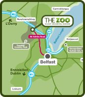 Map showing the location of Belfast Zoo