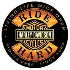 harley davidson logo with flames - Google Search