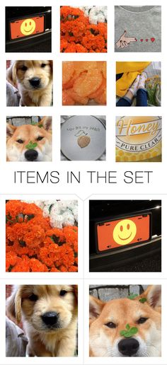 """""""happiness"""" by rowlet ❤ liked on Polyvore featuring art"""