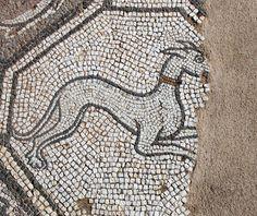 Grey hound, detail. Early Christian mosaic, Delphi Archeological Museum, Greece. Photo: Helen Miles Mosaics