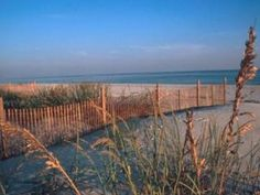 Gulf Shores Alabama Beach Condo For Rent