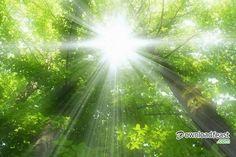 Beautiful Nature Photography