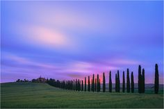 In the heart of Tuscany, in Val d'Orcia, stands Agriturismo Poggio Covili, thanks to the famous lane of cypress trees a well photographed object.