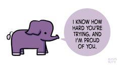 elephant, i am proud of you