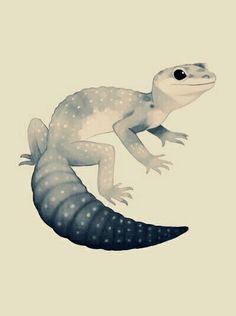 Black and white gecko tattoo?