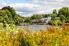 This free self-guided walk London's Richmond is a great way to see the area and discover all its hidden corners. Richmond Green, Richmond London, Richmond Park, Richmond Hill, Best Places In London, London Neighborhoods, Walks In London, London Blog, London Property