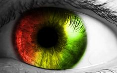 A medical researcher named Harminder Dua from the University of Nottingham, England, has discovered a new human body part that was previously unknown. The new human body part has been discovered in the cornea of human eyes. Human Eye, Human Body, Mind Blowing Theories, I Origins, Theories About The Universe, Retina, A Course In Miracles, Eye Drops, Green Eyes