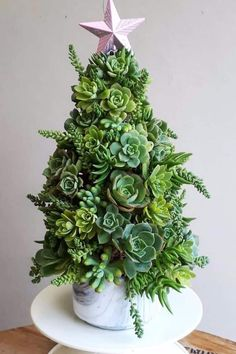 Diy christmas tree 151855818671363708 - 14 Succulent Christmas Trees So Cute, You Just Might Ditch Your Balsam Fir Source by princessch Pretty Christmas Trees, Flocked Christmas Trees, Christmas Tree Themes, Christmas Lights, Christmas Diy, Simple Christmas, Christmas Mantles, Christmas Cactus, Christmas Villages