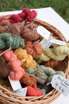 Natural Dyes Gallery |