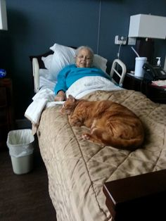 Read the comments, that is one large feline!!