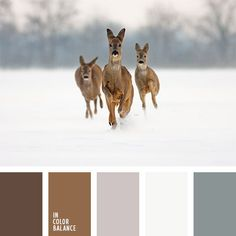 Winter dear in snow. Color inspiration for design, wedding or outfit. More color pallets on color.romanuke.com.